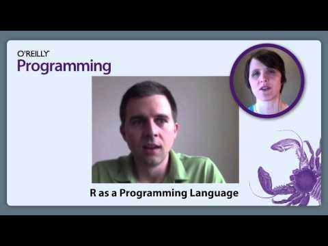 R as a Programming Language