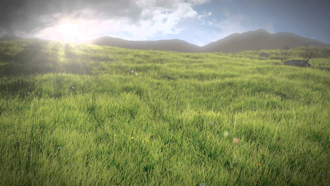 Realistic Grass Field Blender 2.6 HD - YouTube