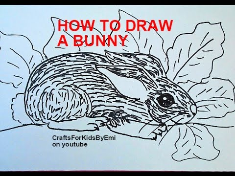 How to DRAW A BUNNY RABBIT, drawing lessons for kids by ...