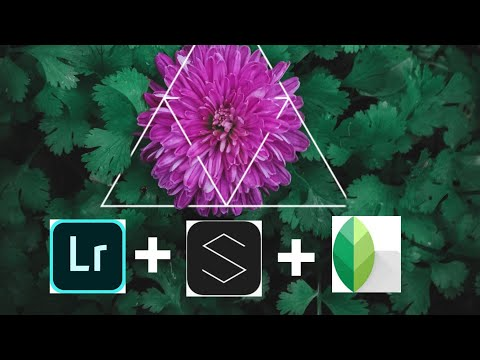 Shapical App Trick Free  Eraser  Lightroom +Snapseed + Saphical Editing  Mobile Photography Tricks