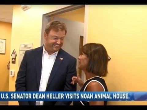 Image of: Gif News Reno Us Senator Dean Heller Visits Noah Animal House Bloomberg News Reno Us Senator Dean Heller Visits Noah Animal House Youtube