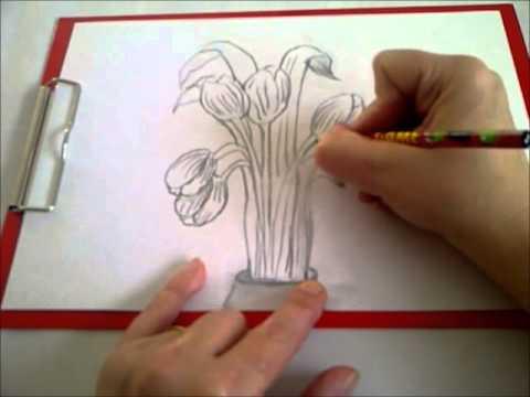 Zeichnen Lernen Für Anfänger Einen Frühlings Blumenstrauß Zeichnen