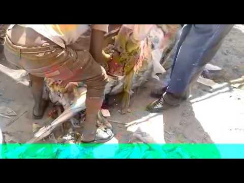 Gau Raksha Dal Jalore