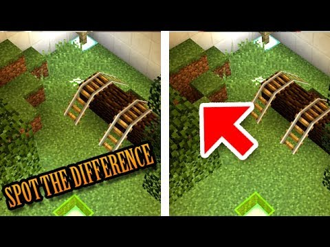 Minecraft: Can You Spot the Difference?