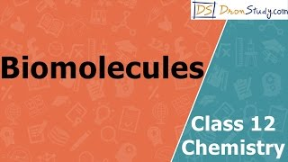 Chemistry lectures class 10