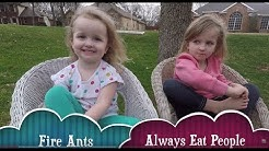 Fireant Control   For Kids