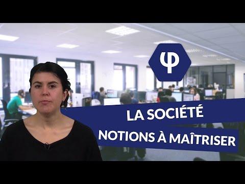 La Société : notions à maîtriser - Philosophie - digiSchool