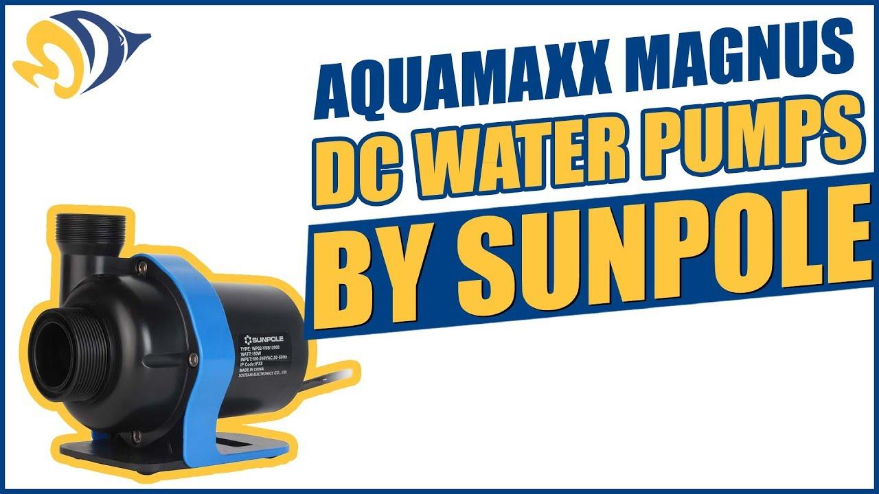 Pumps (water) Hearty D&d Jecod Dct6000 Impeller Pet Supplies