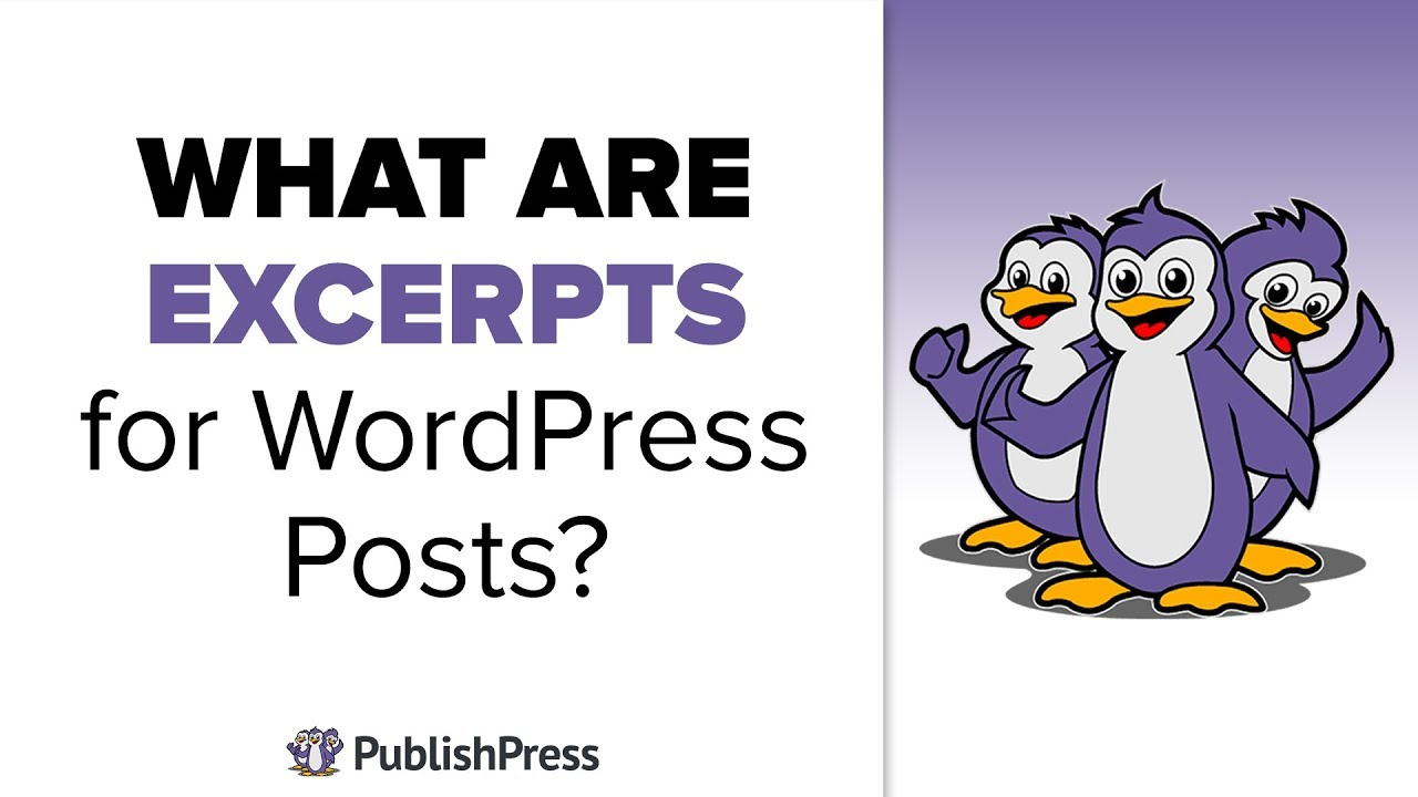 Download What are Excerpts for WordPress Posts?