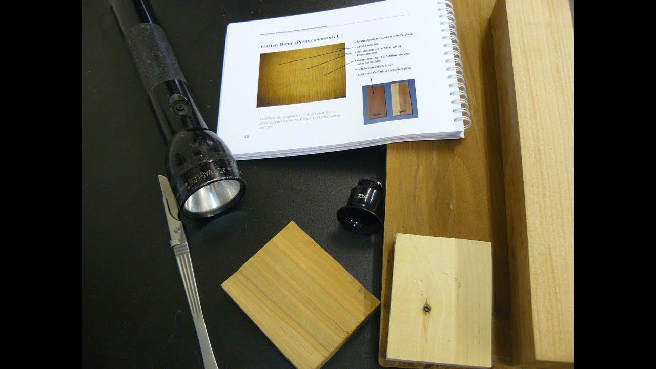 Holzarten Erkennen holzbestimmung holzarten erkennen holzerkennung birnbaum