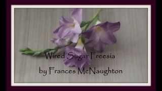 Sugar freesia video tutorial ( full-length )