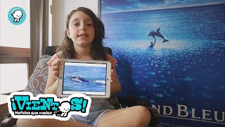 """""""Alicia y el rastreo de ballenas"""""""