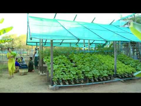 mitv - Efficient Farming: Innovative Solutions For Farmers In Dry Zones