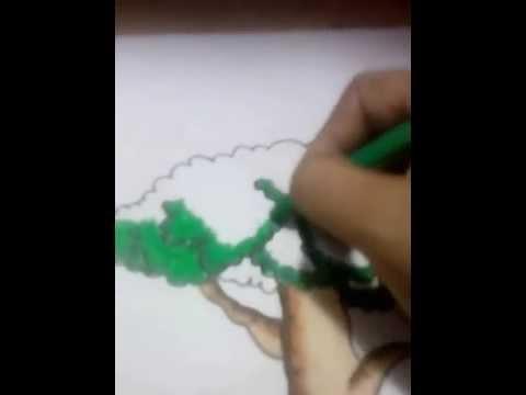 Mewarnai Pohon Terbaik