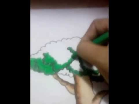 Mewarnai Pohon Terbaik Youtube