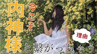 公式ブログ:「いつでもPICOといっしょ」 https://ameblo.jp/akiaki0830-juria/