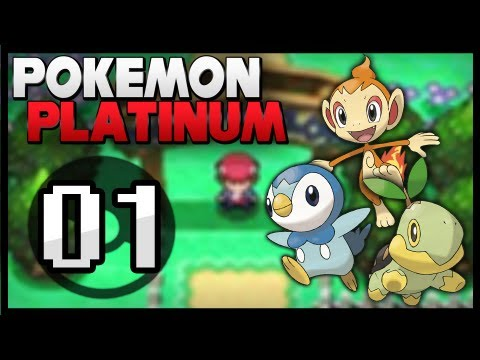 how to get randomizer on pokemon platinum