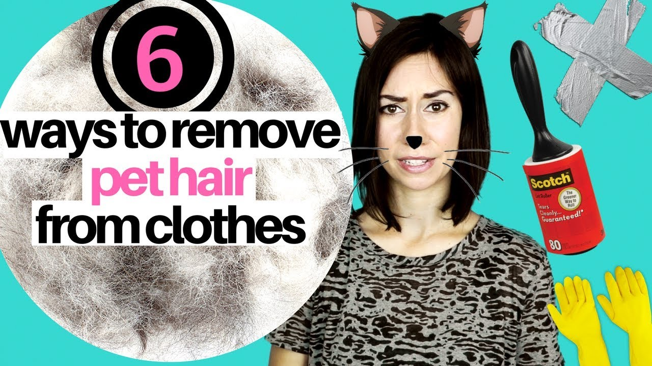 6 WAYS TO REMOVE PET HAIR FROM CLOTHING - YouTube