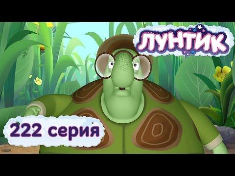 Лунтик и его друзья - 222 серия. Черепаха