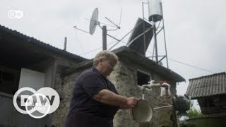 Georgia: Getting forests out of hot water   DW English
