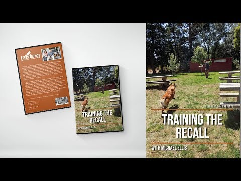 Training the Recall with Michael Ellis I Trailer