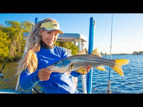HOW TO Catch 10 Different Fish! MULTI SPECIES Inshore Saltwater Fishing Florida Video!