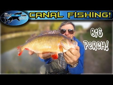 Canal Fishing - Float vs Feeder | TAFishing