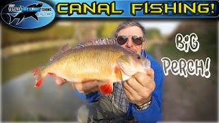Canal Fishing - Float vs Feeder   TAFishing