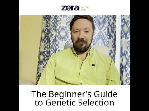 Beginner's Guide to Hemp Genetic Selection with Andy Hopkins