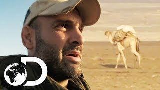 Ed Loses His Camel In The Middle Of The Scorching Desert | Ed Stafford: Into The Unknown