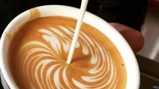 Video best latte art terbaik part 2 roseta , love , swan , tulip , download MP3, 3GP, MP4, WEBM, AVI, FLV Juni 2018