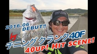 「シルバーウルフ チニングクランク40F」 40UPヒットシーン!