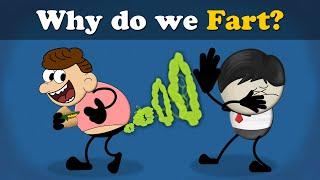 Why do we Fart? | #aumsum
