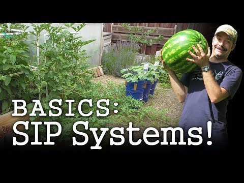 self-watering-planter-basics:-diy-gardening-with-sub-irrigated-wicking-beds-(albopepper)