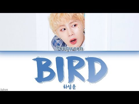 HA SUNG WOON (하성운) - 'BIRD' LYRICS [HAN|ROM|ENG COLOR CODED] 가사