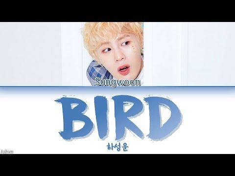 HA SUNG WOON (하성운) – 'BIRD' LYRICS [HAN|ROM|ENG COLOR CODED] 가사