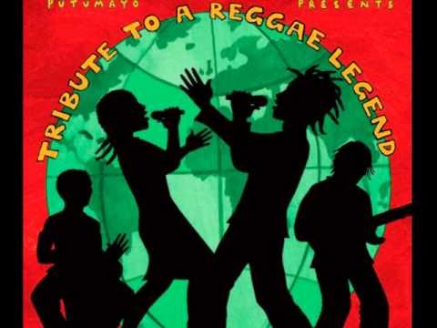 Waiting In Vain - Northern Lights/Jonathan Edwards - Putumayo Presents: Tribute To a Reggae Legend