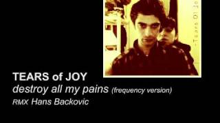 TEARS OF JOY - destroy all my pains (frequency version) [RMX Hans Backovic]