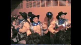 """Chirigota Callejera """"Los Gogos"""" actuación completa."""