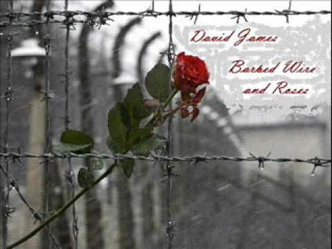 David James - Barbed Wire And Roses (Pinmonkey Cover)