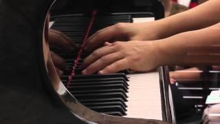 Schumann Piano Quartet,  Op. 47, Sostenuto assai - Allegro ma non troppo