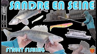 Video Zander in SEINE : a good street fishing session !!!! download MP3, 3GP, MP4, WEBM, AVI, FLV November 2018