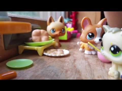 Lps: Sorry not sorry(Ep1)