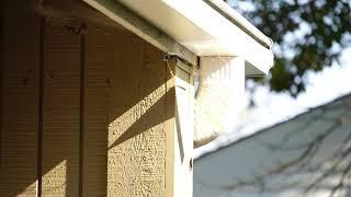 Bird Flasher Woodpecker Deterrent in Action