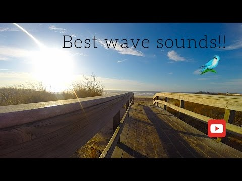 BEACH BOARDWALK RELAXATION SCENE WAVE SOUNDS | 1 Hour
