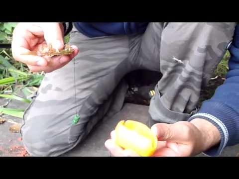 технопланктон метод давилка