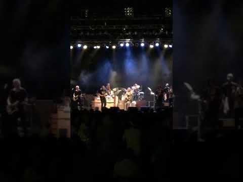 Tedeschi Trucks Band (St. Simons Island)