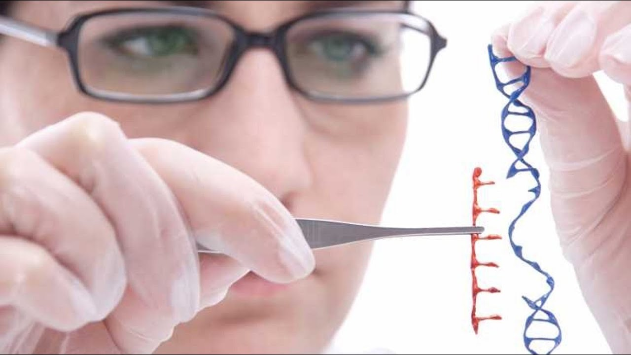Human Genome Editing Banned By Scientists Over Safety Concerns ...