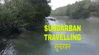 Sundarban Tours !! सुन्दरबन की यात्रा !! Best Forest In Bengal !! Amazing Forest !!