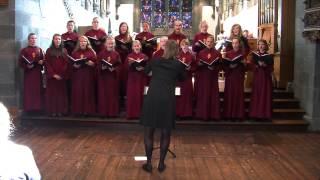 Surely goodness and mercy - Salme 23,6 S Møller ,  Korkonkurranse 2014 - Cantando musikkforlag